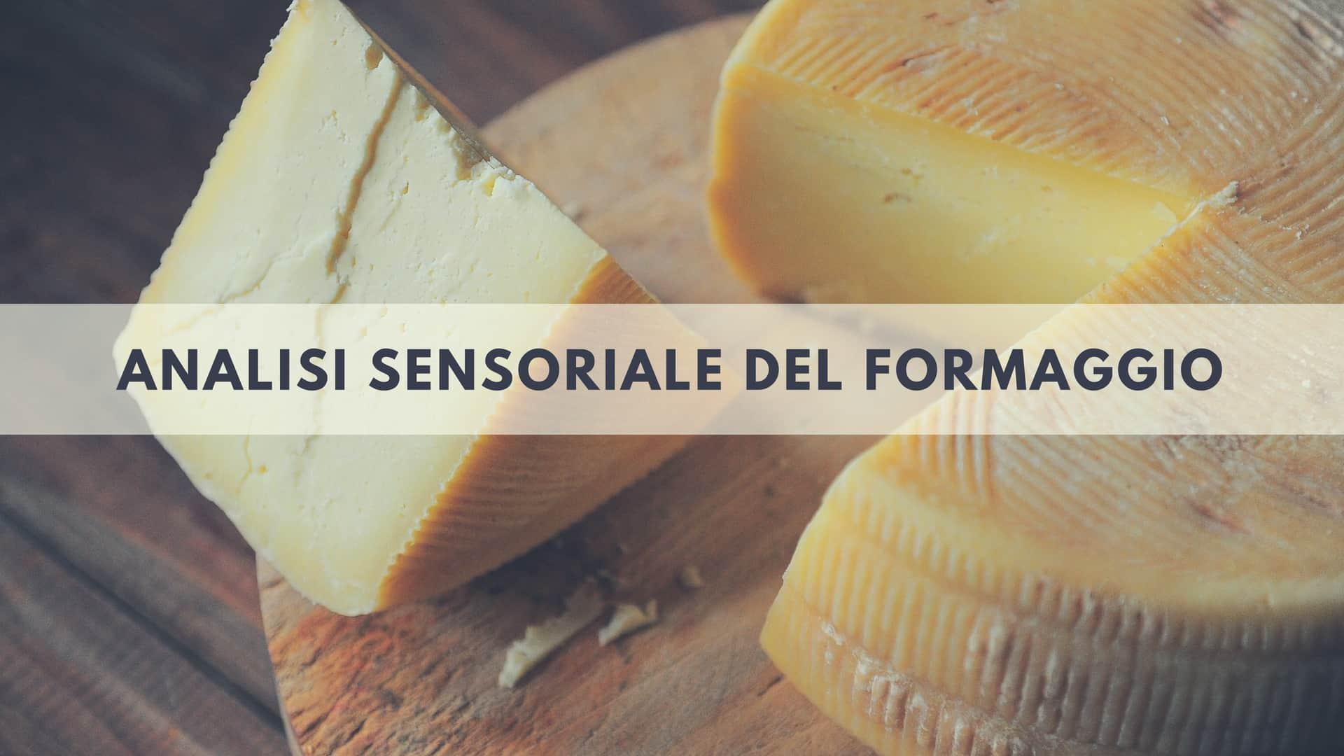 La vista nell'analisi sensoriale del formaggio