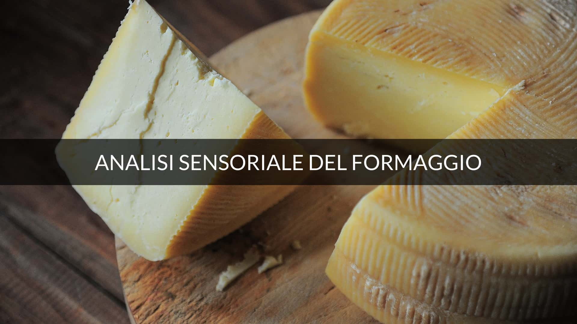 Il tatto nell'analisi sensoriale del formaggio