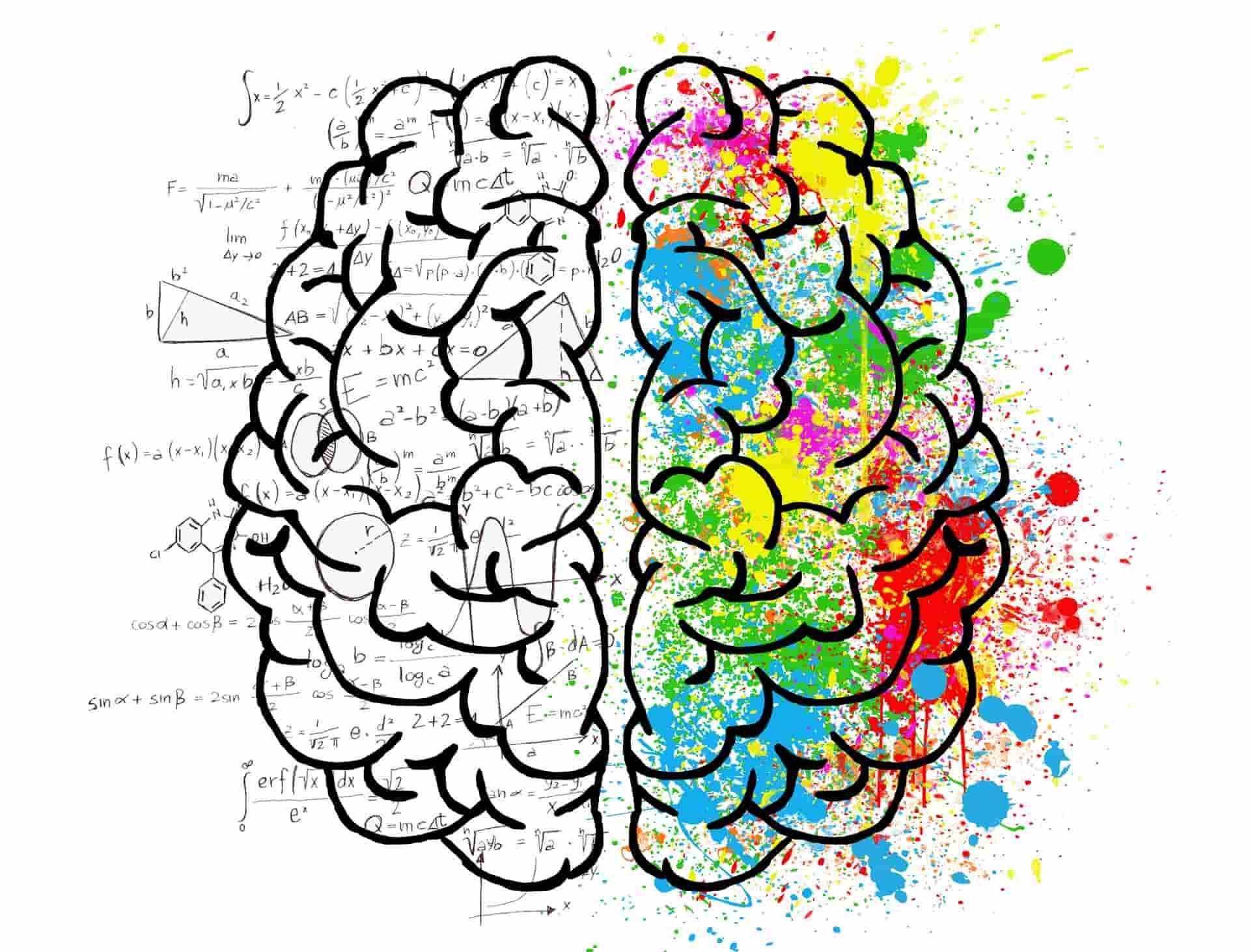 le emozioni e l'intelligenza sociale