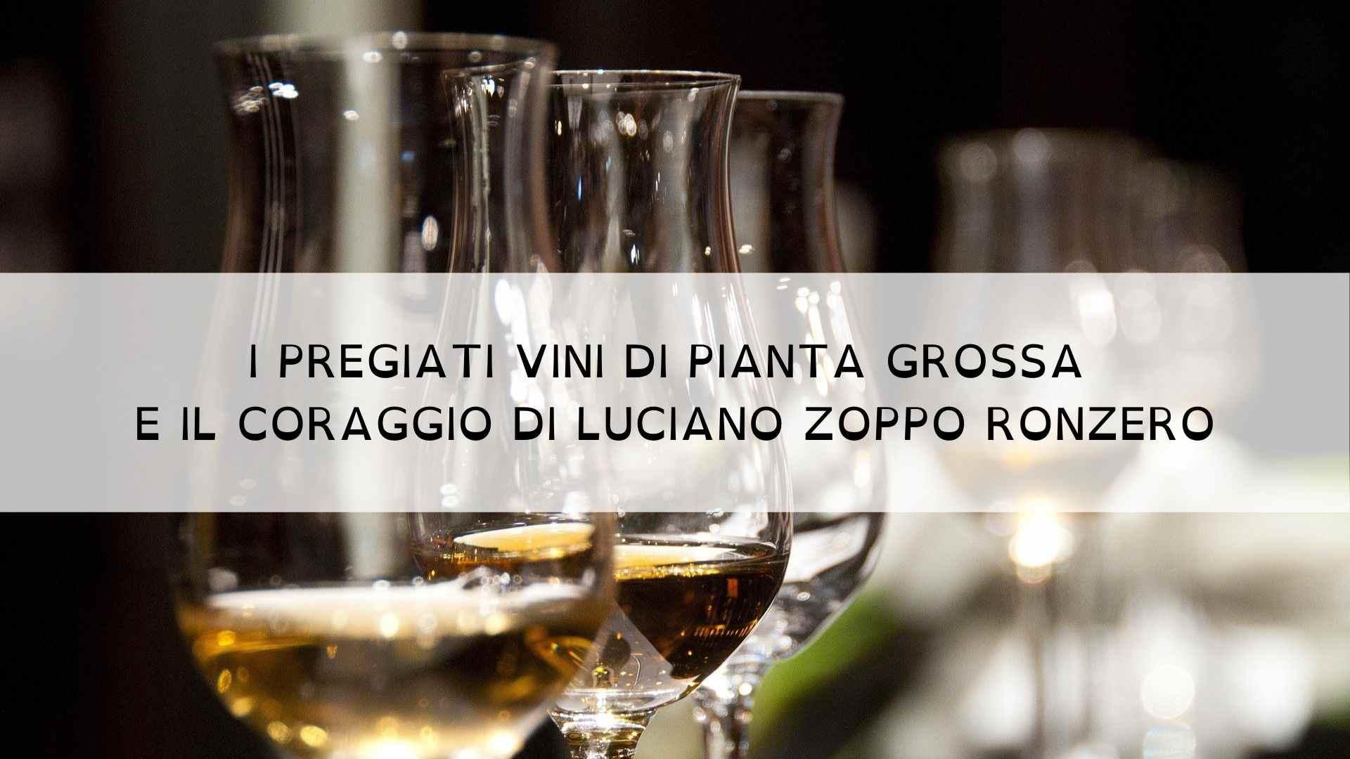 I pregiati vini di Pianta Grossa e il coraggio di Luciano Zoppo Ronzero